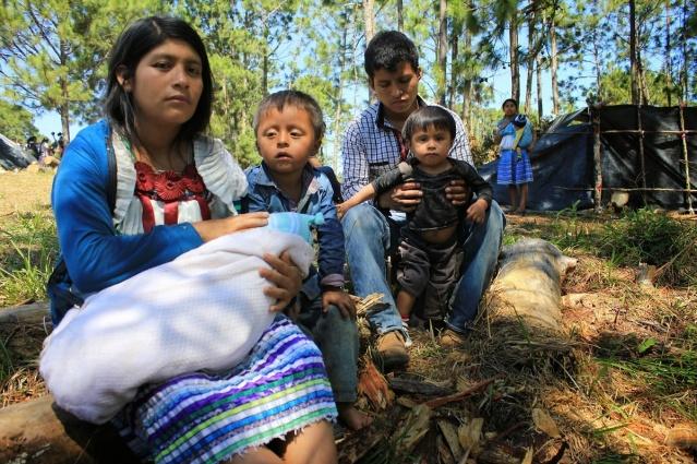 desplazamiento forzado de familias en Chiapas